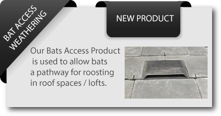 Bat-Access